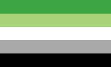 Retângulo composto por 5 faixas horizontais do mesmo tamanho, nas cores verde, verde clara, branca, cinza clara e preta.