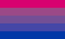 Bandeira biflux