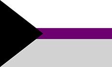 Bandeira demissexual