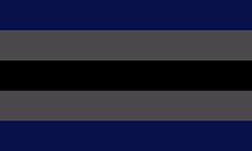 Bandeira gênero-vácuo