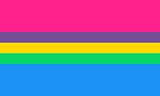 Bandeira multi