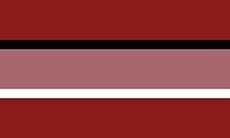 Bandeira neu
