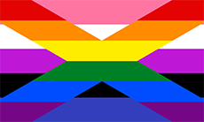 Bandeira omnigay