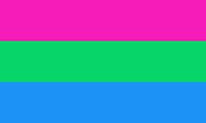 Bandeira Poli