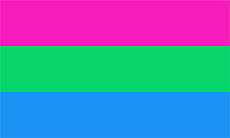 [Imagem: poly__pride_flag__1__by_pride_flags-d8zu7ww.png]