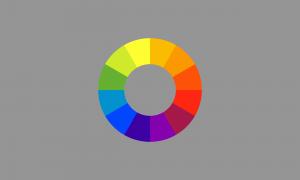 Bandeira gênero-cor