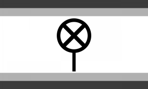 Bandeira sem gênero