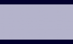 Bandeira homem-vago