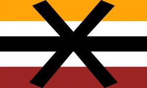 Bandeira Apotissensorial/Apotissensual