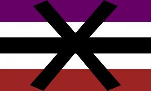 Retângulo composto por 5 faixas horizontais na proporção 7:5:5:5:7, nas cores roxa, branca, preta, branca e vermelha escura, e por um grande X preto no centro.