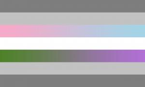 Bandeira Demifluida