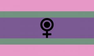 Bandeira femgênero