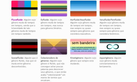 Uma captura de tela parcial da lista de identidades não-binárias.