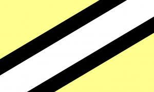 Bandeira Obligênero