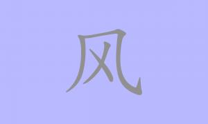 Bandeira Fengênero