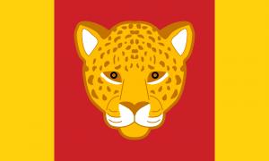 Bandeira Quariwarmi