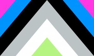 Bandeira Nullagênero/Nulagênero