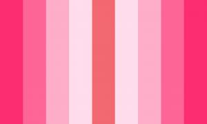 Uma bandeira composta de 9 faixas verticais de mesmo tamanho, sendo que todas elas são tons de rosa.
