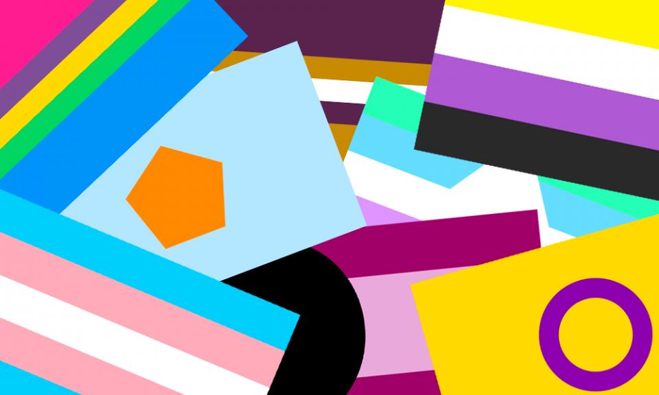 Um monte de bandeiras de orgulho. É possível reconhecer as bandeiras multi, NCL, não-binária, NHINCQ+, altersexo, trans, variorientada e intersexo.