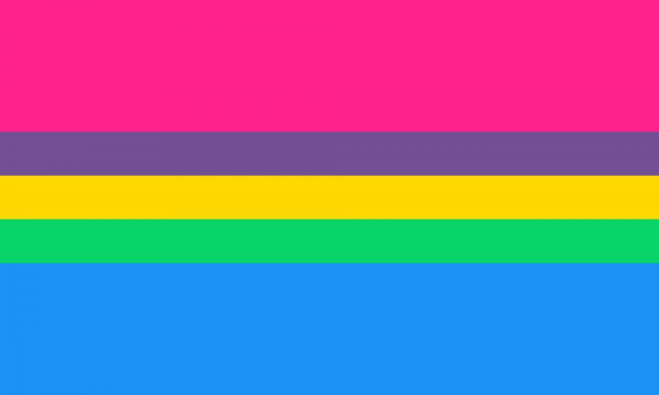 Uma bandeira composta por cinco faixas horizontais: uma rosa, uma roxa, uma amarela, uma verde e uma azul. As faixas centrais são um terço do tamanho da primeira e da última faixa.
