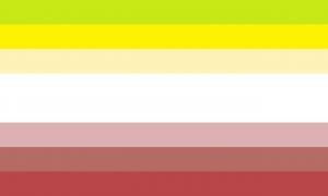 Sete faixas horizontais, sendo que a faixa central possui o dobro do tamanho das outras, nas cores verde clara, amarela, amarela clara, branca, salmão, marrom clara e vermelha.