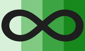 Quatro faixas verticais do mesmo tamanho, em tons de verde que vão de um bem claro até um escuro. Há um grande símbolo de infinito preto que cobre a bandeira do canto esquerdo até o canto direito, que está centralizado verticalmente.