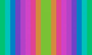 Um retângulo composto por 17 faixas verticais em várias cores, sendo a do meio mais grossa do que as outras, e sendo que as cores das faixas da direita e da esquerda são espelhadas.