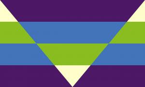 Um retângulo composto por um fundo que é quatro faixas horizontais do mesmo tamanho nas cores amarela, verde, azul e roxa escura e por um formato de triângulo virado para baixo que cobre metade da bandeira e que também é composto por faixas horizontais, só que em ordem invertida (roxa escura, azul, verde e amarela).