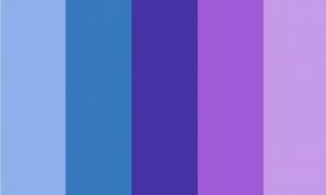 Retângulo composto por 5 faixas verticais do mesmo tamanho, nas cores azul clara, azul, roxa azulada, roxa e roxa clara.